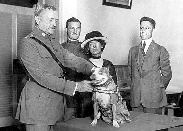 Gen. John Pershing awards Sgt. Stubby with a gold medal in 1921. Stubby served in 17 battles and fought in four major allied offensives during WWI. (Photo courtesy of Smithsonian Institution's National Museum of American History) http://www.acc.af.mil/news/story.asp?id=123363512